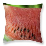 Two Slices Of Watermelon Throw Pillow