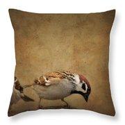 Two Sparrows Throw Pillow