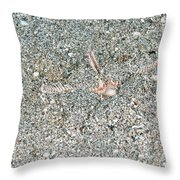 Two-spined Sea Star Throw Pillow