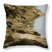 Two Spotted Sandpipers On The Flint Rivers Banks Throw Pillow
