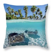 Two Stingrays 1 Throw Pillow