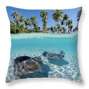 Two Stingrays 1 Throw Pillow
