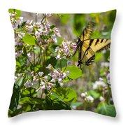 Two Tailed Swallowtail Throw Pillow