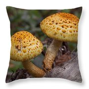 Two Toadstool Chums On A Log Throw Pillow