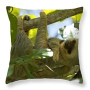 Two-toed Sloth Relaxing With A Grin Throw Pillow