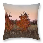 Two Trees At Sunset Throw Pillow