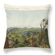 Two Views Of The Himalayas Throw Pillow