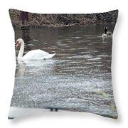 Two Waterfowl Throw Pillow