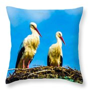 Two White Storks 16 Throw Pillow