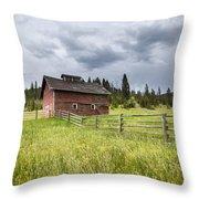 Two Window Barn Throw Pillow