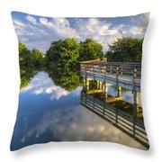 Two Worlds At Wakodahatchee Throw Pillow