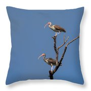 Two Youngsters In A Tree Throw Pillow