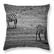 Two Zebras Eating. Tanzania Throw Pillow