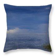 Twisting Water Throw Pillow