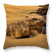 Tybee Island Throw Pillow