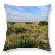Tybee Island Dunes And Path Throw Pillow
