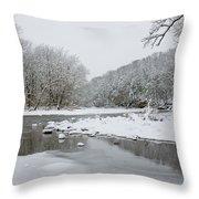 Tyler Park In Winter Throw Pillow