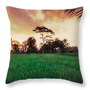 Ubud Rice Fields Throw Pillow