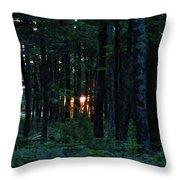 Udell Sunset Throw Pillow