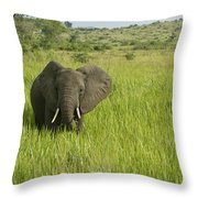 Ugandan Elephants Throw Pillow