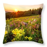 Uinta Wildflowers Throw Pillow
