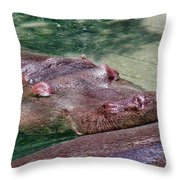 Ultimate Rest Throw Pillow