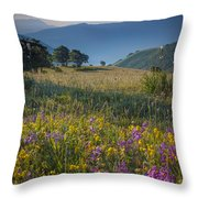 Umbria Wildflowers Throw Pillow