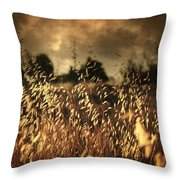 Un Illusione Throw Pillow