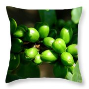 Unbrewed Coffee Throw Pillow