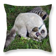 Uncle Uncle Uncle Throw Pillow by Susan Leggett