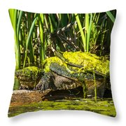 Under Covered Throw Pillow