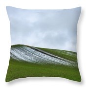 Under Menacing Skies Throw Pillow