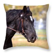 Under Rein Throw Pillow