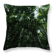 Under The Bamboo Haleakala National Park  Throw Pillow