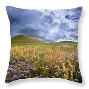 Under The Big Sky Throw Pillow