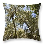 Under The Canopy - The Magical And Mysterious Trees Of The Los Osos Oak Reserve Throw Pillow