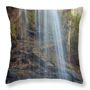 Under The Falls Throw Pillow