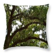 Under The Live Oak Tree Throw Pillow