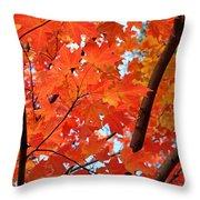 Under The Orange Maple Tree Throw Pillow by Rona Black