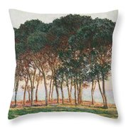 Under The Pines. Evening Throw Pillow