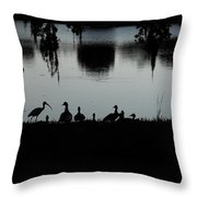Under The Shadow Of The Day  Throw Pillow