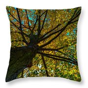 Under The Tree S Skirt Throw Pillow