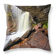 Underneath The B Reynolds Waterfall Throw Pillow