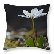 Underside View Throw Pillow