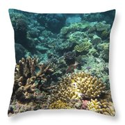 Underwater Color Throw Pillow