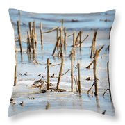 Underwater Cornfield Throw Pillow