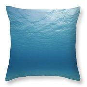 Underwater Scene. Throw Pillow