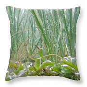 Underwater Shot Of Submerged Grass And Plants Throw Pillow