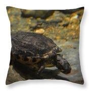 Underwater Turtle Throw Pillow