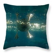 Underwater View Of Duck's Webbed Feet Throw Pillow